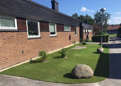 Trädgård i Täby